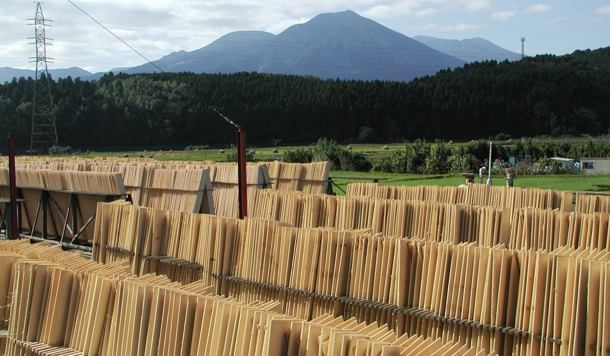 もみの木を宮崎県生駒高原の加工所にて約1ヶ月間じっくりと天日乾燥